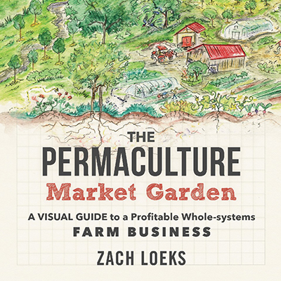 Transitioning to a permaculture market garden, part one