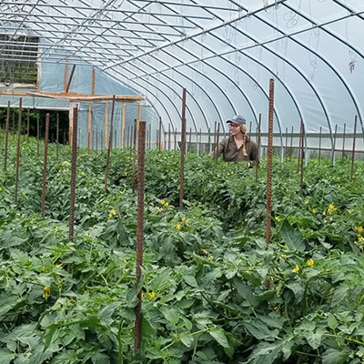 Strategies for long-term hoophouse soil fertility