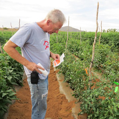The man behind the tomatoes: Fred Hempel of Artisan Seeds