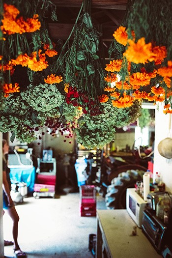 flower drying garage