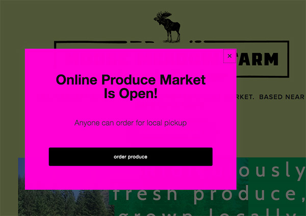 tips-selling-produce-online
