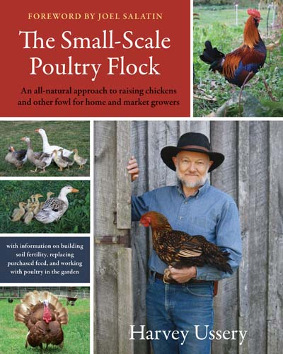 Small Scale Poultry Flock